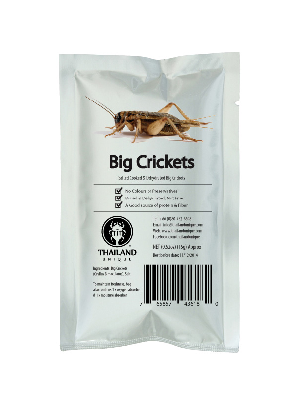 Edible Big Crickets - Gryllus Bimaculatus