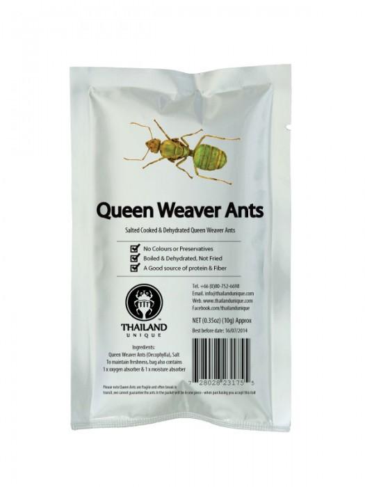 Edible Queen Weaver Ants