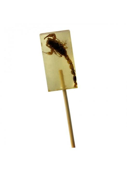 Chinese Yellow Scorpion Candy Lolly