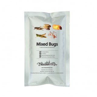 Bag of Assorted Edible Bugs