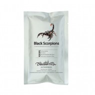 Edible Scorpions - Heterometrus spinifer