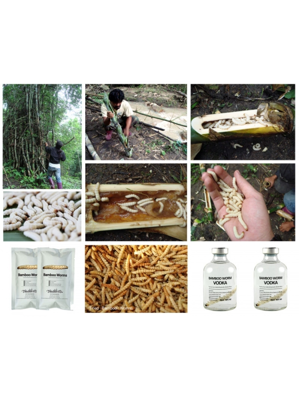 Bamboo Worm Vodka Infusion 70ml