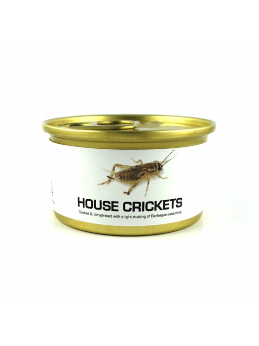 Canned Small Crickets