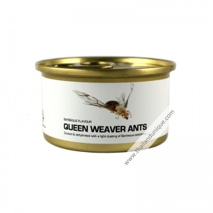 Canned Queen Weaver Ants