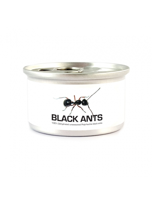 Canned Black Ants with Salt