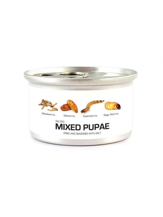 Fried Edible Pupae Mix