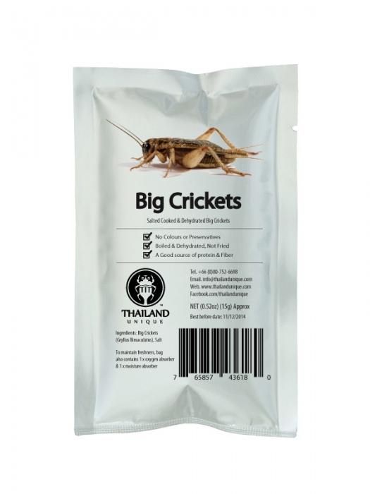 Edible Big Crickets - Gryllus Bimaculatus