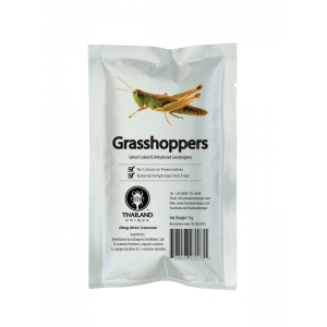 Edible Grasshoppers 15g - Orthoptera Sp