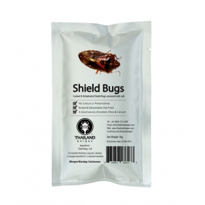 Edible Stink Bugs (Shield Bugs)