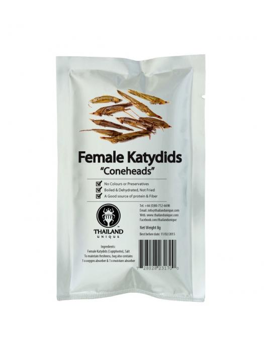 Female Katydids (Cone heads) - Salted