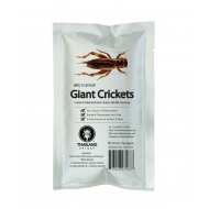 Oven Roasted Giant Crickets