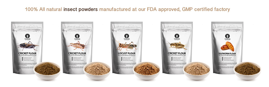 Insect Protein Powders Cricket Silkworm Locust And More