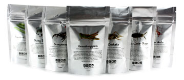 edible bugs bags for sale