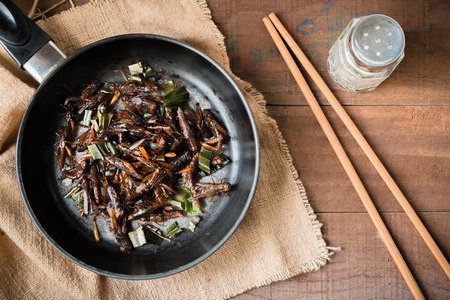 5 ways you should try eating edible insects for the first time
