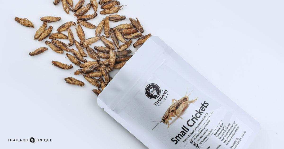 edible crickets in bag