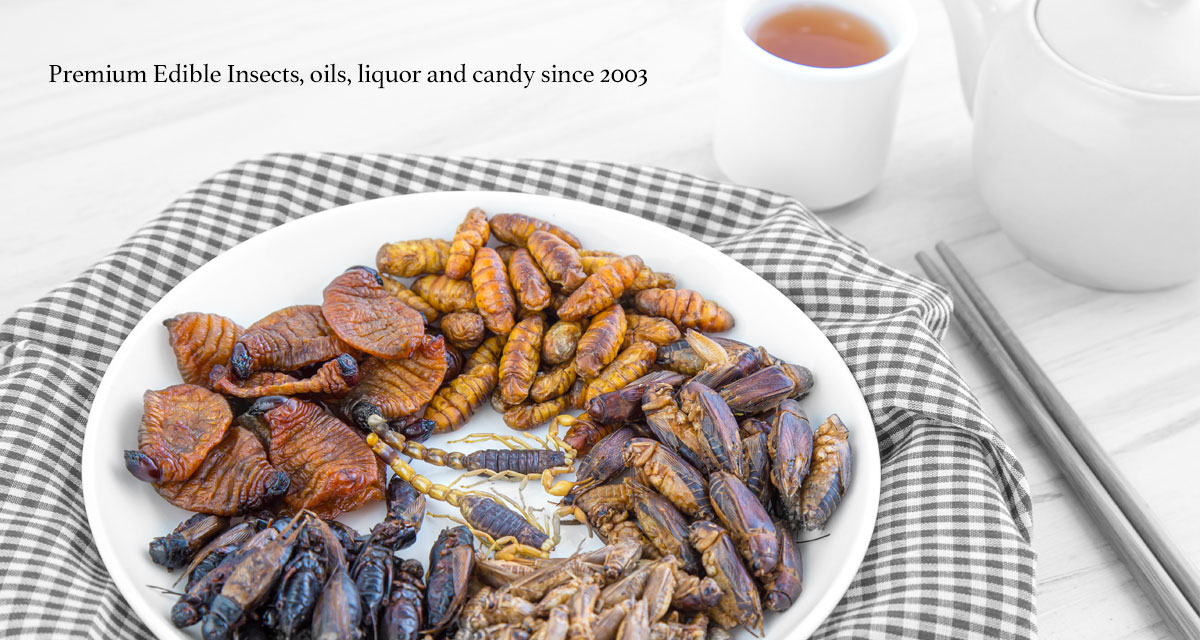Edible insects for sale since 2003