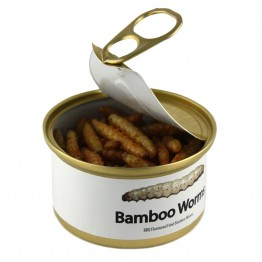Canned Bamboo Worms
