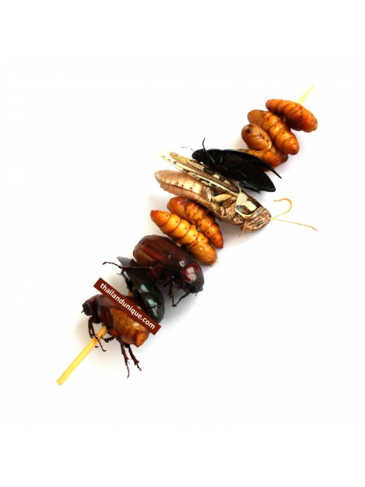 BBQ Flavour 4 Bug Kebab