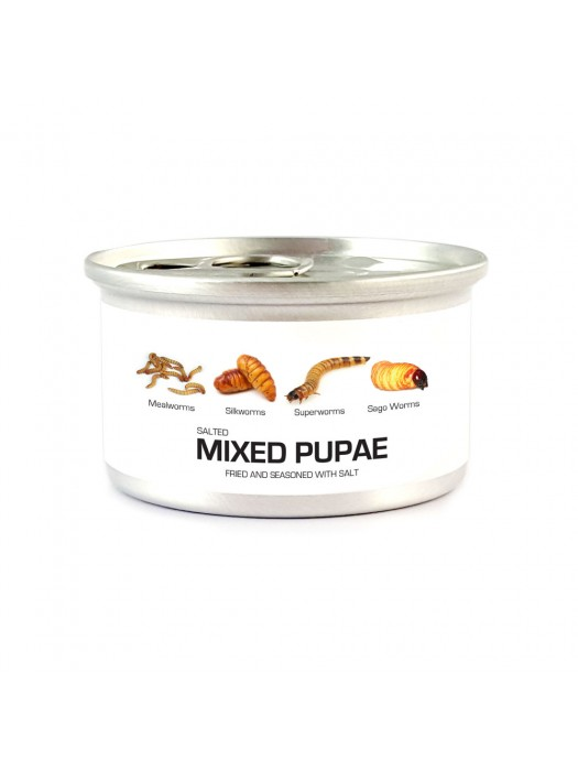 Fried Edible Pupae Mix