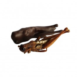 Dark Chocolate Grasshoppers