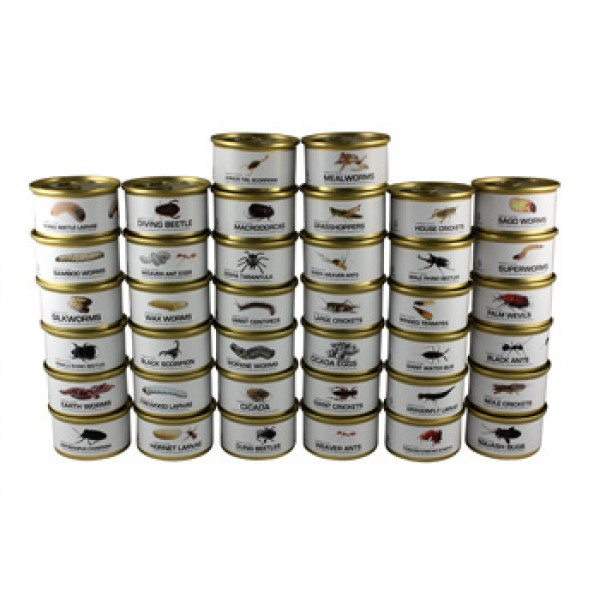 Canned Insects
