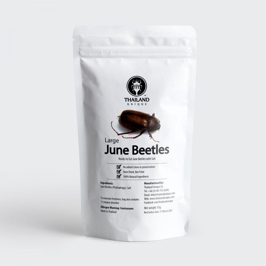 Large Edible June Beetles