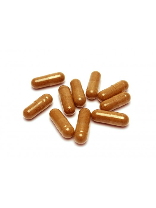 Cricket Powder Capsules