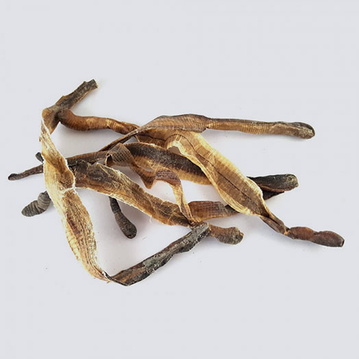 Dried Edible Earthworm
