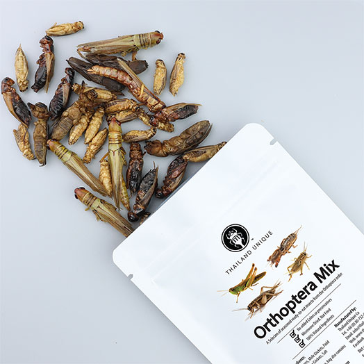 Orthoptera Mix Bag 15g
