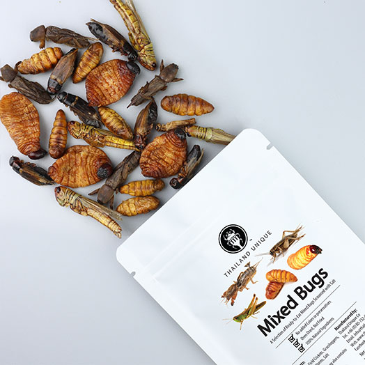 Mixed Edible Insects (Original)