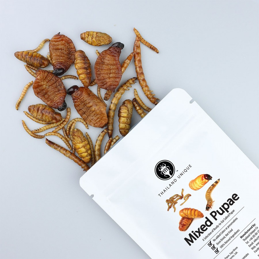 Mixed Worms (Pupae) 15g