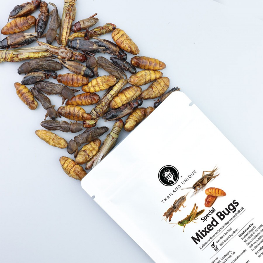 Special 40g Mixed Bugs